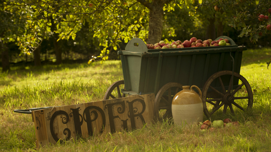 killerton-cider