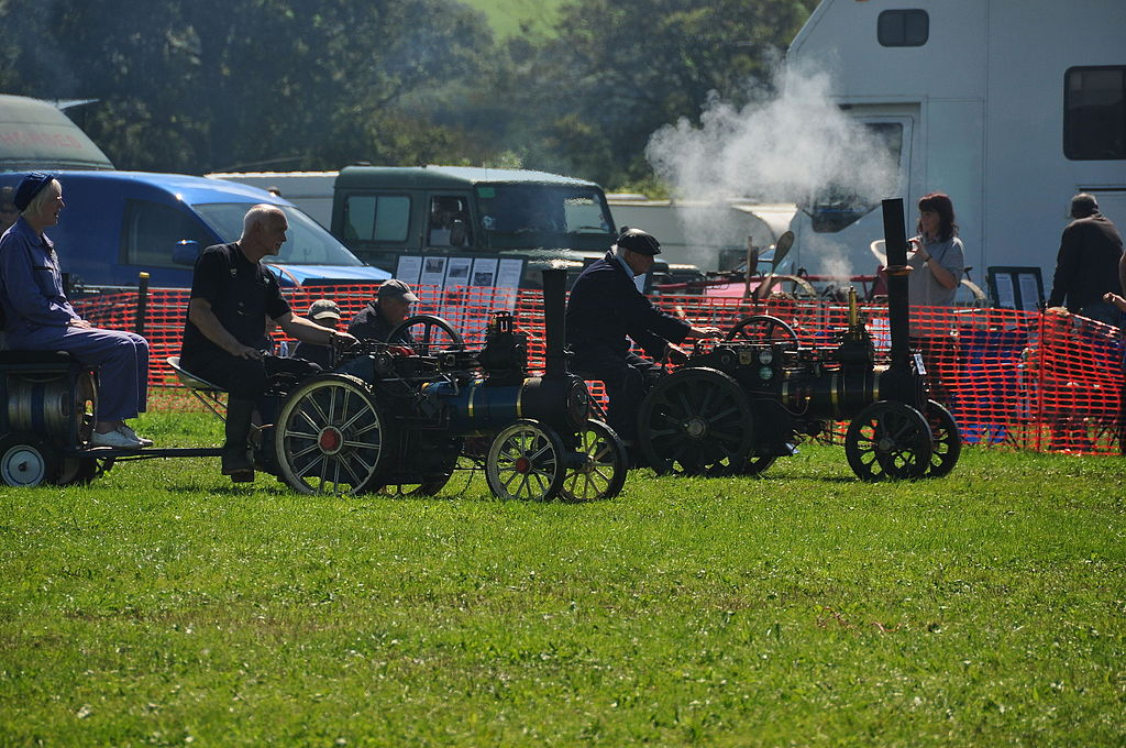 2012_Cornish_Steam_and_Country_Fair,_Stithians_(5218)