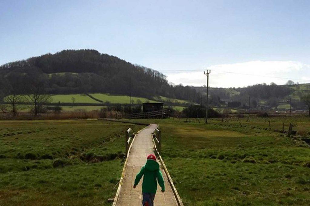 axe-wetlands-walk-pconsent_full