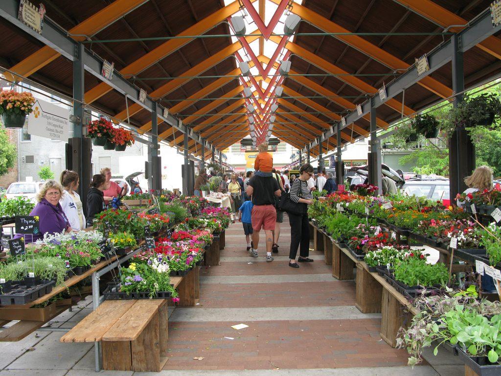 Findlay-farmers-market